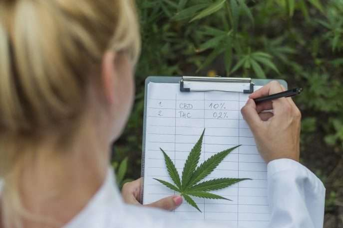 Section 280E and why it's important to cannabis investors